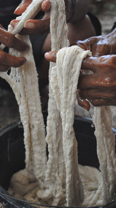 shop-plantdye-whitecotton-dsc_1313-235x420